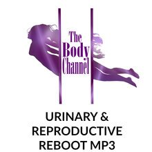 Urinary and Reproductive Reboot MP3